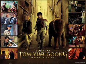 Muay-Thai-Wallpapers-Tom-Yum-Goong-2