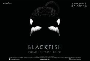 Blackfish%20poster